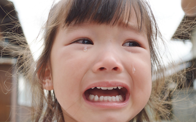 渋谷 松濤 歯科 松涛デンタルクリニック 小児歯科2