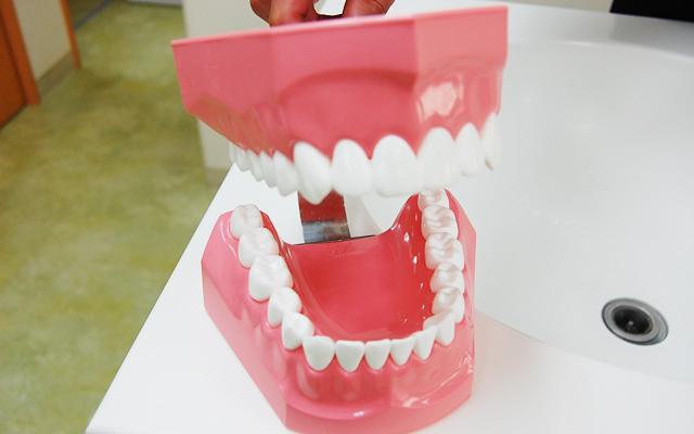 渋谷 松濤 歯科 松涛デンタルクリニック 一般歯科2